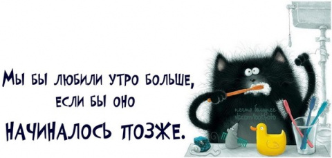 """НУ ВСЁ, ДИМА....!)) Мои """"невры"""" не выдерЖивают- начинаем КОТОМАТРИЦУ???))))))) №1"""