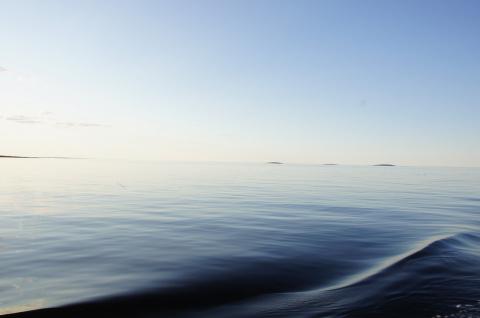 Соловецкие острова 2 (Конкурс)