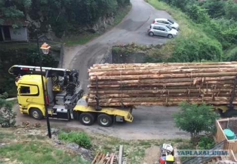 Сейчас вот этот лесовоз проедет вот по этому мосту: видео дня