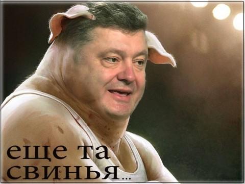 Картинки по запросу порошенко свинья жидовская