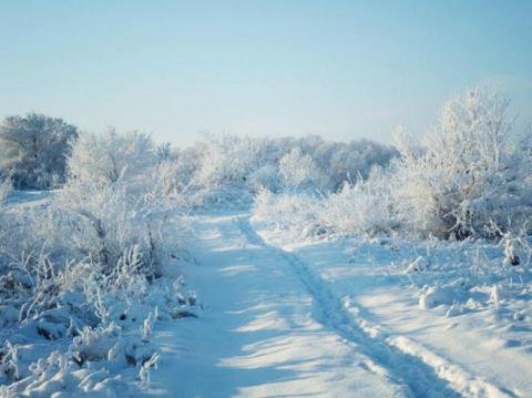 Якутская зима шокировала бри…