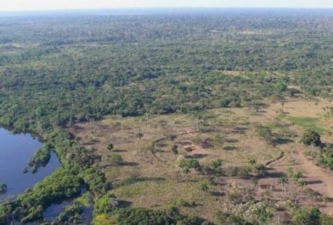 10 неожиданных тайн джунглей
