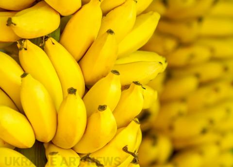 В руках голландского художника бананы превращаются в настоящие произведения искусства