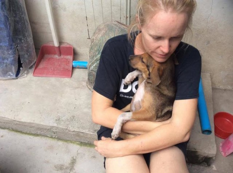 Женщина посвятила свою жизнь спасению уличных собак