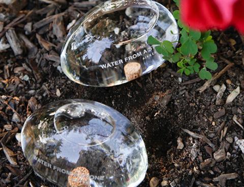 Вода из камня для комнатных растений