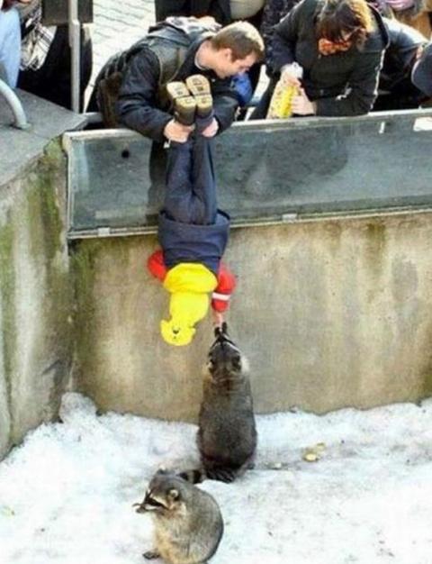 25 случаев, когда поход в зоопарк оказался смешным приключением