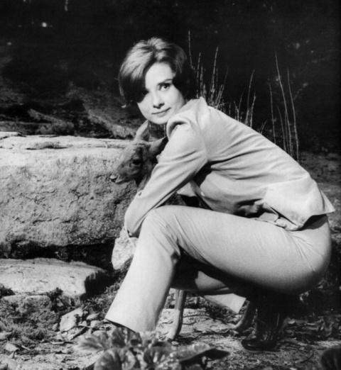 Одри Хепберн и олененок Пиппин.