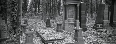 10 удивительных фактов о смерти