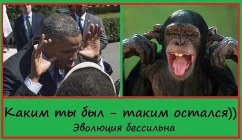 http://mtdata.ru/u27/photoB8DE/20316372580-0/big.jpeg