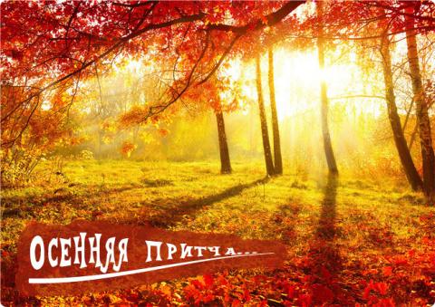ПРИТЧА НЕДЕЛИ. Осенняя притча