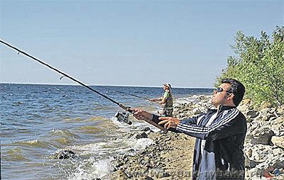 2043. Специфика джиговой ловли с берега на Волгоградском море