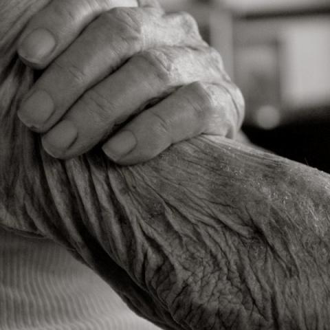 Красота старости?