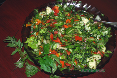 Полезные сорняки: салат со снытью