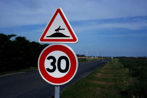 Дорожные знаки превратили в символы экстремального спорта
