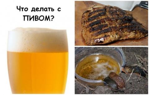 Без похмелья: 7 бытовых ситуаций, которые «разрулит» банка пива