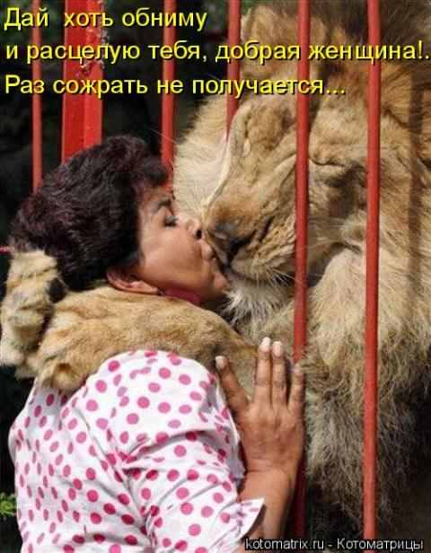 http://mtdata.ru/u28/photo68AE/20098844569-0/big.jpeg