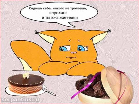 Забавные стихи про диету