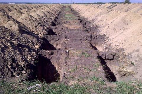 Украину ведут в большое свежевырытое кладбище под названием: «Новое европейское будущее»