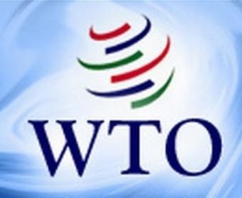 Вступление в ВТО: болезненный удар по автопрому