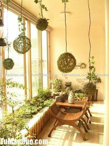 Зимние сады. 50 разнообразных вариантов.