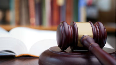 Суд подтвердил арест домохоз…