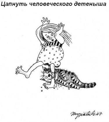 Воскресная котоматрица: обязанности кошки