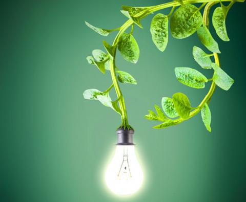 Собираем урожай электричества