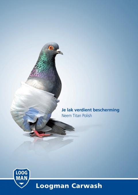 Зачем птицам подгузники