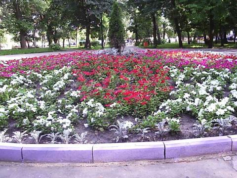 Тамбов, самый умирающий город России.
