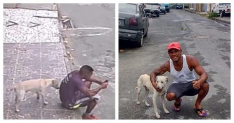 Собака перепутала парня с де…
