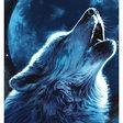 Песня волка