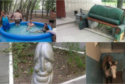 В российских дворах можно ув…
