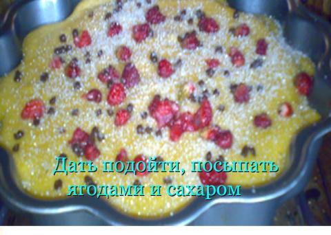 """Абрикосовый пирог """" Ленивец """""""
