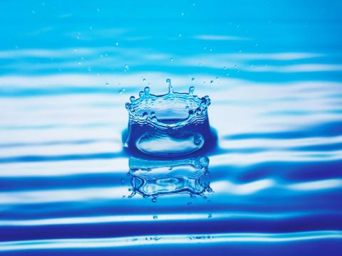 Свойства крещенской воды.
