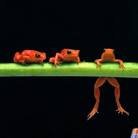 Рептилии и земноводные, которых спасает от вымирания ассоциация BIAZA