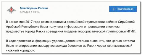Шойгу доложил Владимиру Путину об успешной ликвидации главаря ИГИЛ [вежливая аналитика]