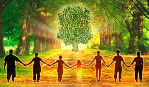 Нарушения иерархии в семейно…