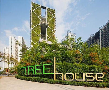 Как в Сингапуре дом вырастили