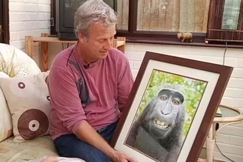 Британский фотограф отстоял авторские права на «обезьянье селфи»