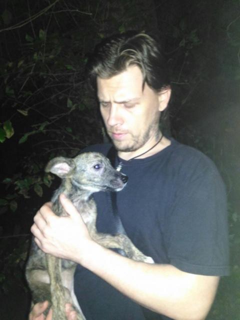 Житель Ростова спас собаку, …