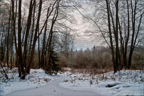 Березовские поля  –  чудесное явление в декабре