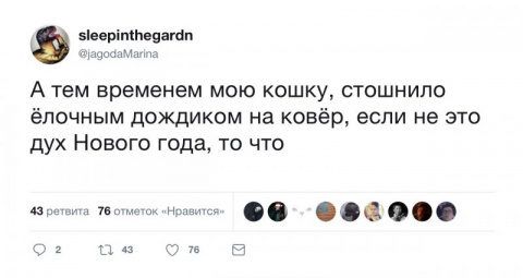 Прикольные комментарии из соцсетей (32 скрина)