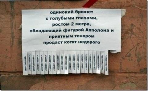 ВЕСЁЛАЯ ПЯТНИЦА. Шуточное ассорти (2)