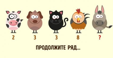 5 детских задачек, которые по силам не каждому