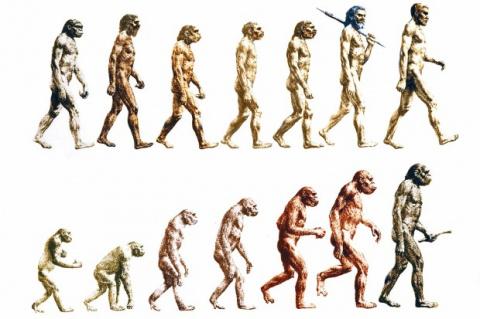 Ученые обнаружили новый вид человека, который вымер в 4 веке до нашей эры