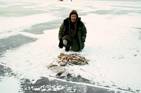 Байкальски окушки
