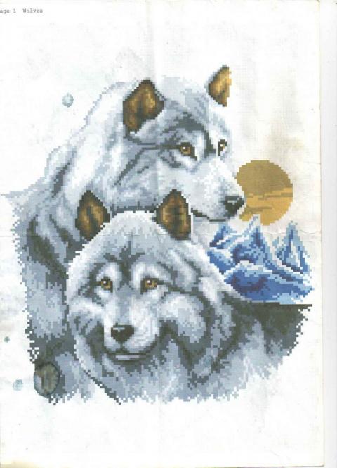 Пара волков.