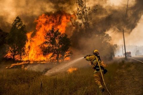 Число жертв лесных пожаров в Калифорнии возросло до 32