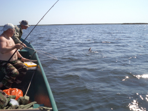 Рыбалка в раскатах 08. 2012г