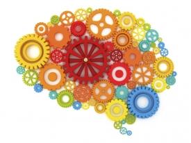 Как сохранить мозг активным …